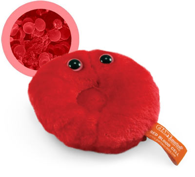 microbes_redbloodcell