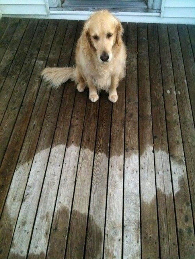 Somebody-fell-asleep-in-the-rain